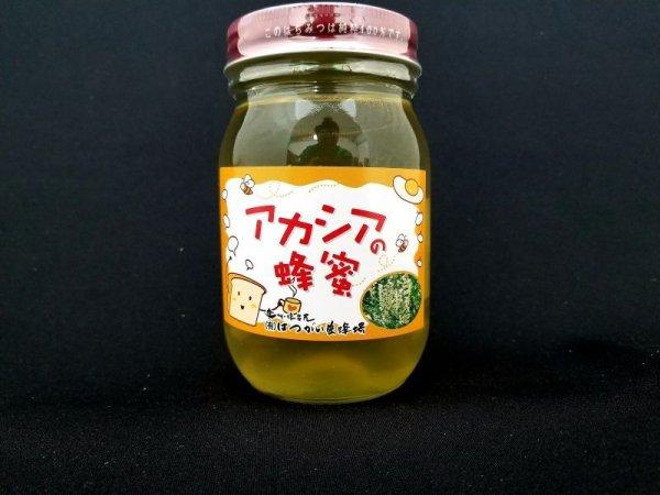 画像1: はつがい養蜂場 アカシアのはちみつ[1,200g] (1)